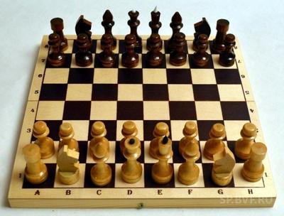 В 1852 году был утвержден устав Петербургского общества любителей шахматной игры