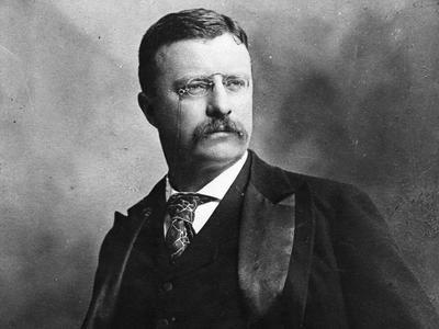 Теодор Рузвельт был ранен