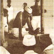 М. К. Ганди со своими последователями