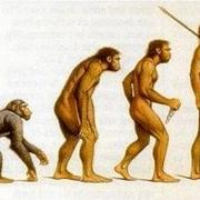 22 ноября в 1853 году появилась в продаже книга «Происхождение видов путем естественного отбора, или Сохранение благоприятствуемых пород в борьбе за жизнь»