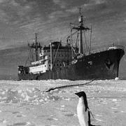 Первая советская научная станция в Антарктиде «Мирный»