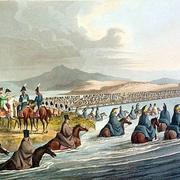 войска Наполеона