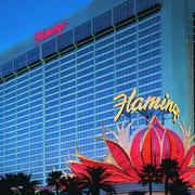 "отель ""Фламинго"""