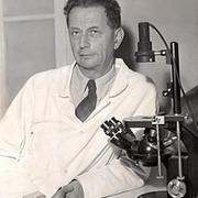 Андре Львов