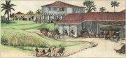 Фабрика по производству сахара в Бразилии. Изображение XVII в.